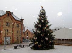 Фестиваль «Путь Рождественских елок 2014»