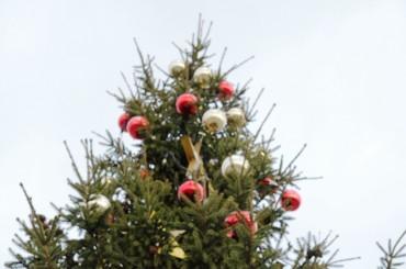 """Iedzīvotājus aicina apmeklēt vides objektu festivālu """"Ziemassvētku egļu ceļš 2015"""""""